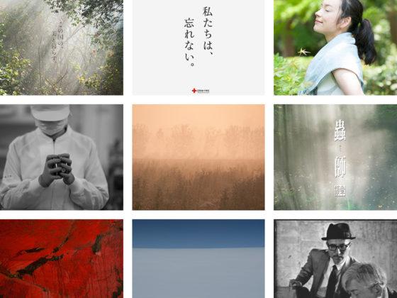 〈strawberry pictures〉ホームページをリニューアル